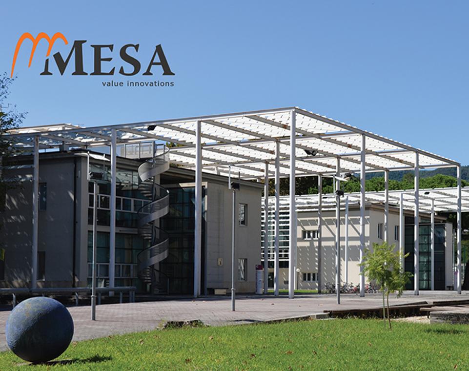 Mesa Consulting